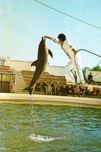 Constanţa - Aquarium, Dolphinarium
