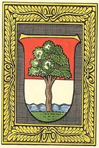 Krummnußbaum