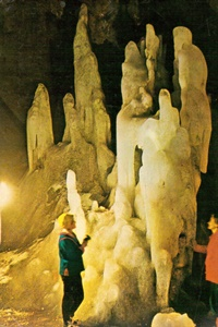 Peștera Scărișoara