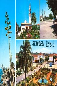 Staouéli