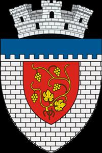 Târgu Neamț