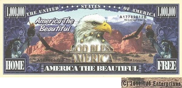 USA - TJ6 - America the beautiful