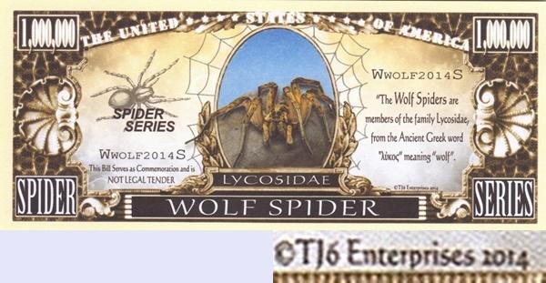 USA - TJ6 - Păianjeni